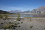 Kluane_Lake_Sheep_Mt._8_von_16_