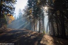Kings Canyon Cedar Crove Smog