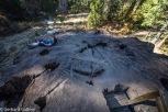 Sequoia NP Big Stumpf