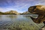 Tioga Pass - Tenaya Lake