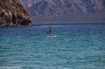 Baja_California_10_von_351_