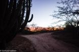 Rancho Verde-Sonnenaufgang