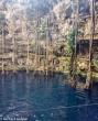 Cenote Oxman,
