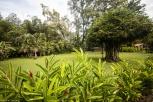 Stellplatz in Palenque