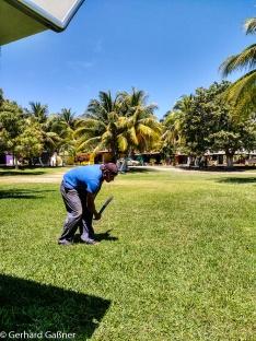 Ernesto der Gärtner beim Rasenmähen
